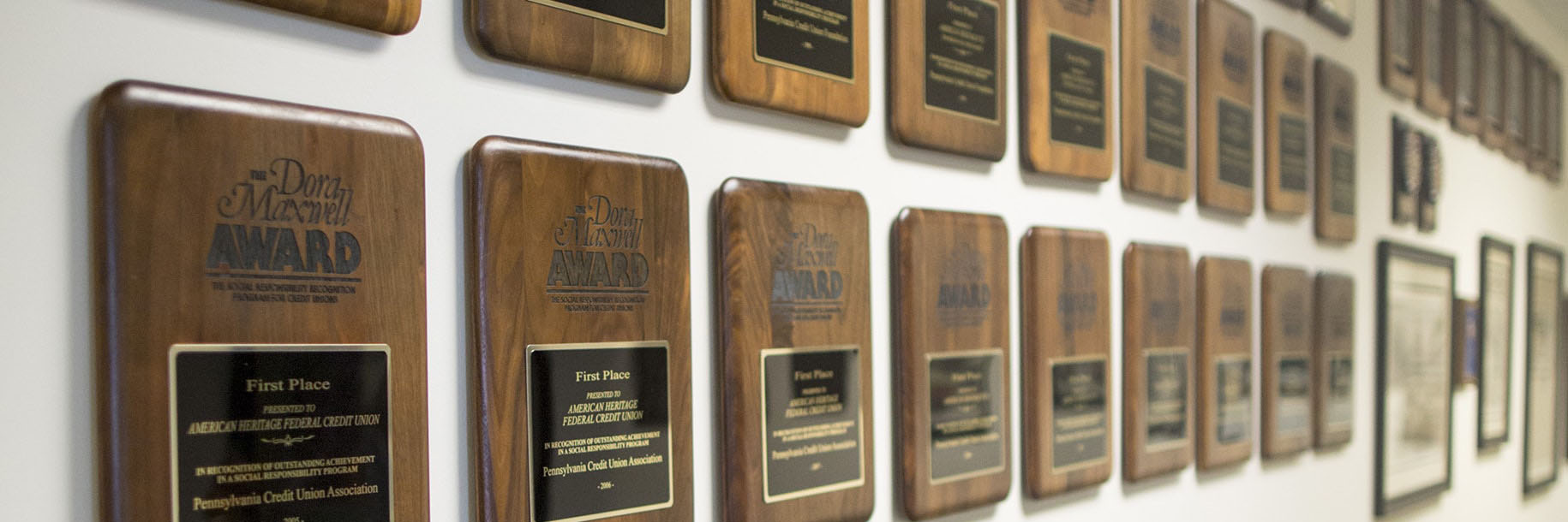 Award plaques hung on wall